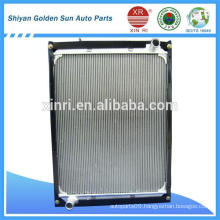 Chinese Truck Radiator Factory 1125113106001 for Foton Aumark Truck